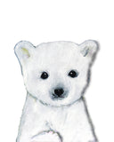Baby Polar Bear Canadian Nursery art print