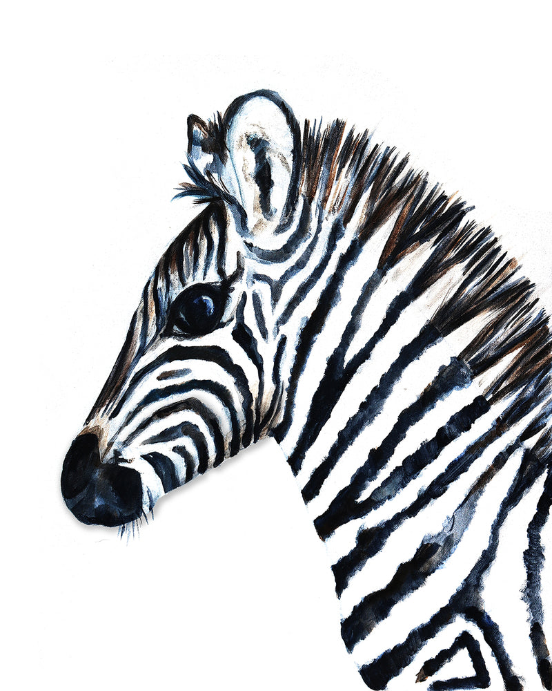 Baby Zebra Safari Nursery Art Print by Vancouver artist Liz Clay