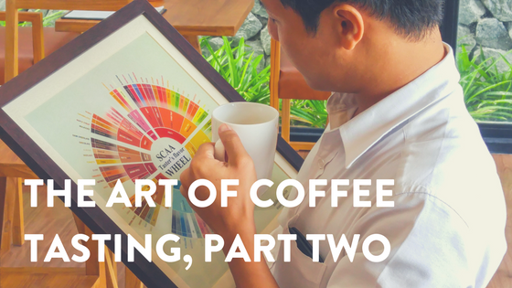 The Art of Coffee Tasting, Part Two