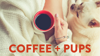 Coffee Goes to the Dogs