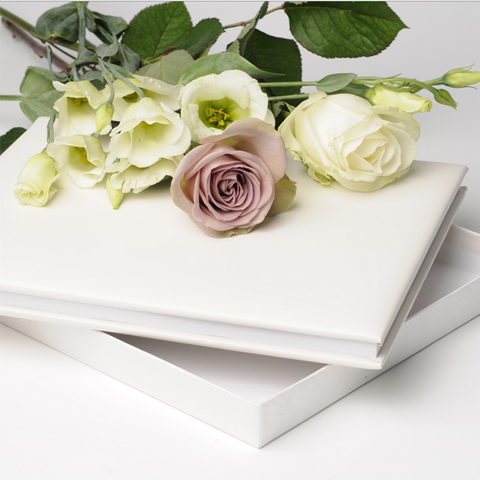 Ivory Plain Leather Book
