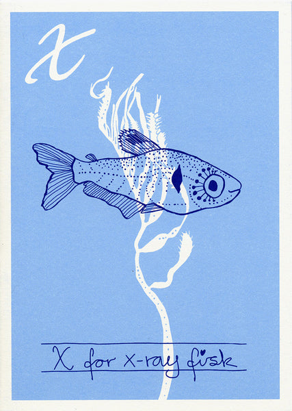 Danish Alphabet card / x-ray fisk