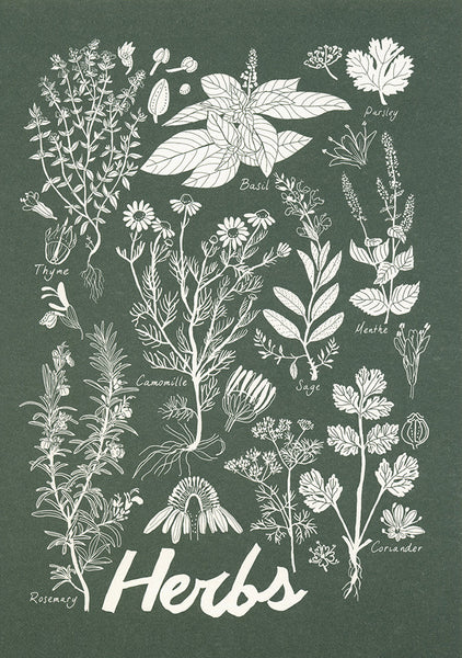 greeting card / herbs