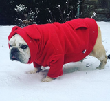 Original BatHat Hoodie for English Bulldogs