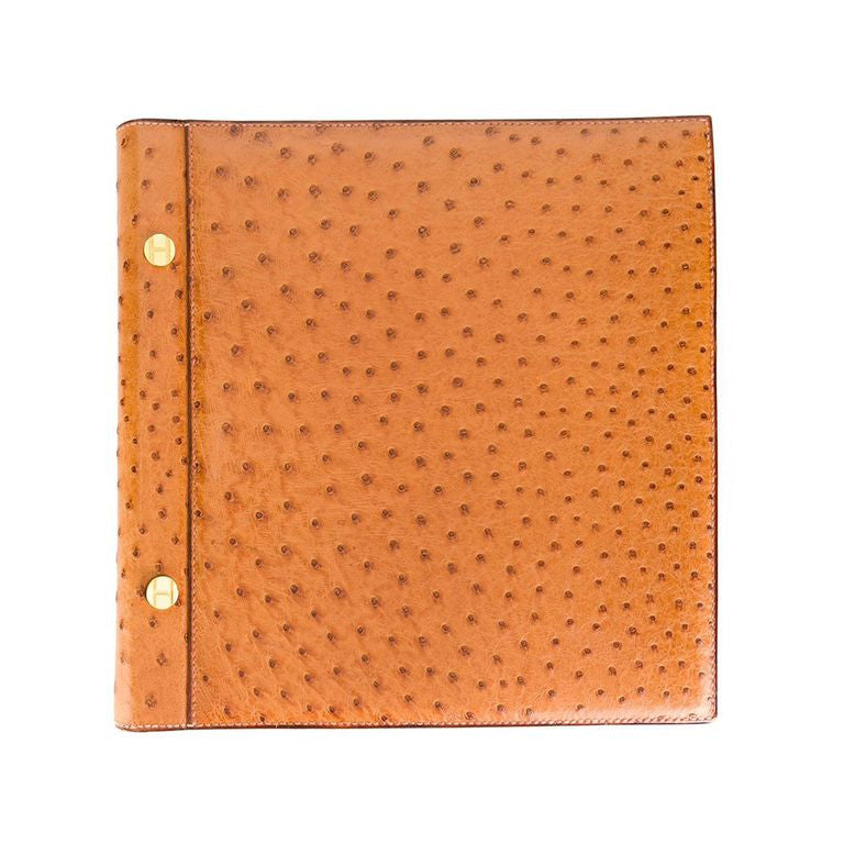 Hermès vintage ostrich leather photo album 90s
