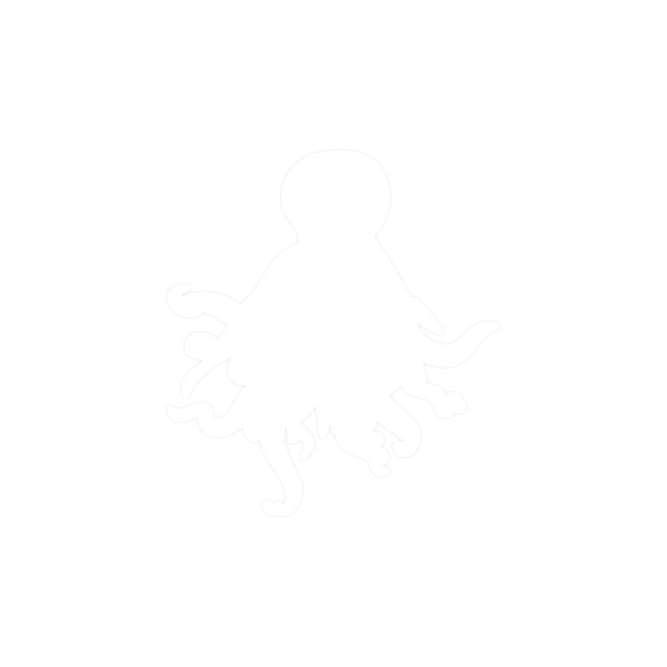 Octopus Clear Sticker