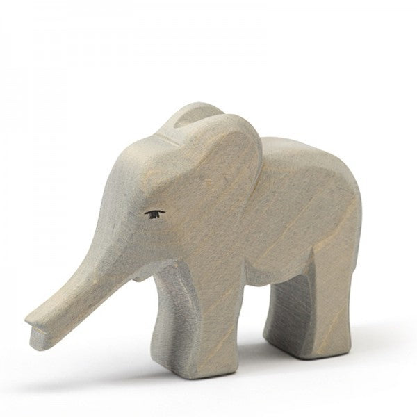 ostheimer elephant small trunk out 1