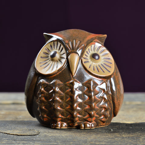 1960's Ceramic Owl Money Box