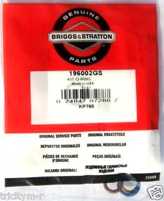 6198 / 196002GS Briggs & Stratton Pressure Washer O-ring Kit
