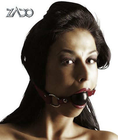 Suede & Pleather Adjustable Gag