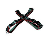 Black Leather Harness, Metal Studs, Buckles