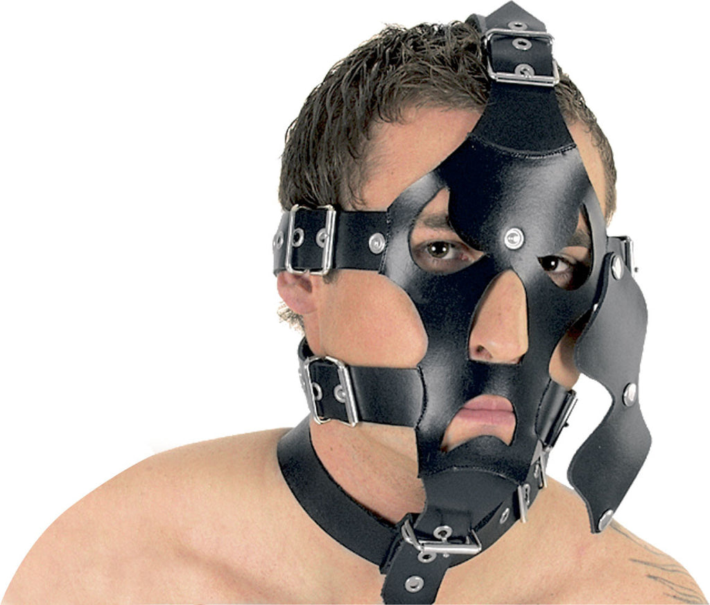 Leather Mask with Heavy Straps & Snap On Blindfold