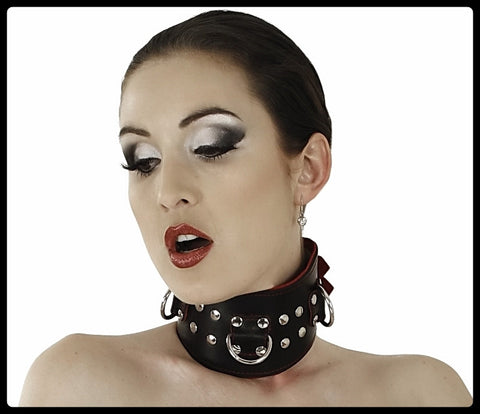Leather Collar, Black & Red, Studded D-Ring Buckles