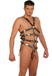 Black Leather Harness with O-Rings & Chromed Strips