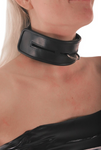 Ledapol leather collar