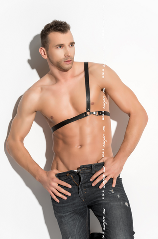 Male O Ring Harness