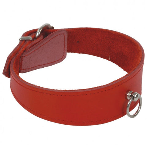 Red Beginner's Collar with O Ring; Thick Front and Buckle