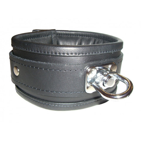 Padded Collar with Swivel