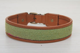 Green Color Leather Dog Collar - Large Size Collars
