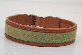 Green Dog Collar - Large Size Collars
