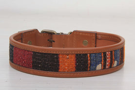 Special Dog Collar - Large Size Collars