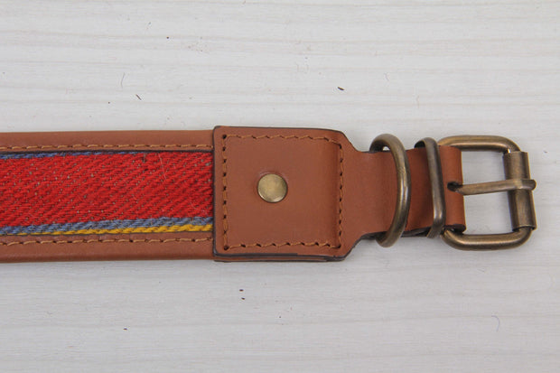 Red and Brown Dog Collar