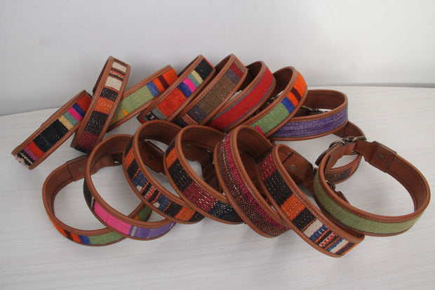 Dog Collar Collection