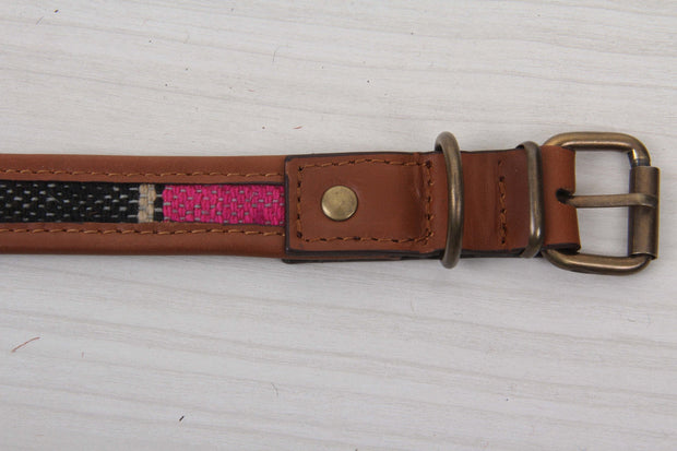 Purple Dog Collar With Brown Leather - Medium Size Collars