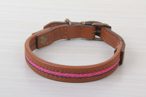 Pink Color Dog Collar