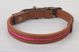 Brown Leather Pink Dog Collar - Small Size Collars