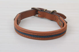 Blue Dog Collar With Brown Leather - Small Size Collars