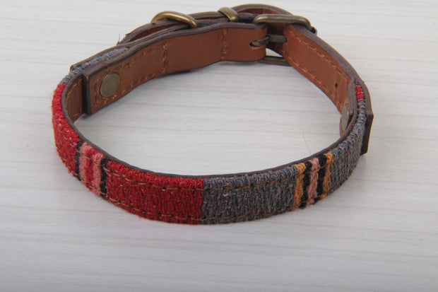 Blue And Red Dog Collar - Small Size Collars