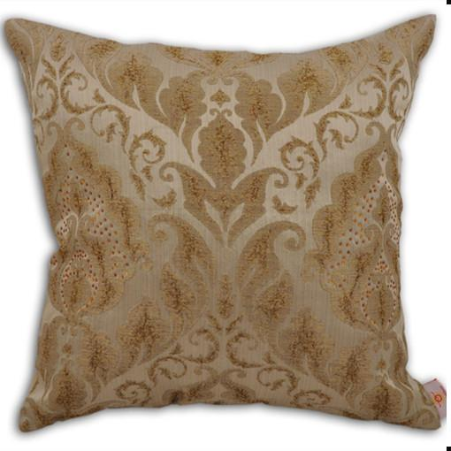 Throw Pillow for Couch