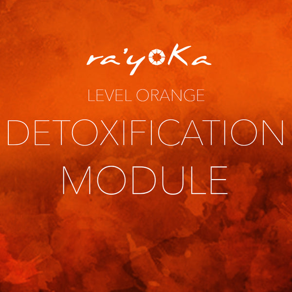 Level Orange DETOXIFICATION Module VIDEO DOWNLOAD