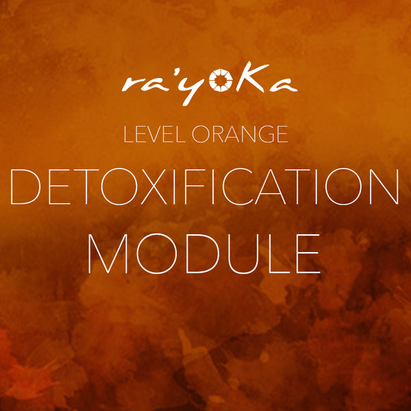Level Orange DETOXIFICATION Series VIDEO DOWNLOAD