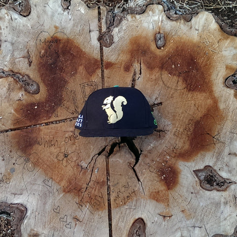 The Nut Stash Snapback