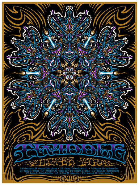 2019 Twiddle Winter Tour