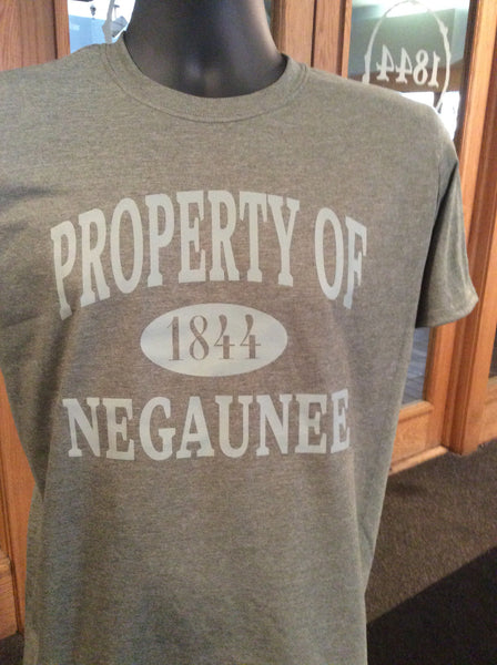 Property of Negaunee