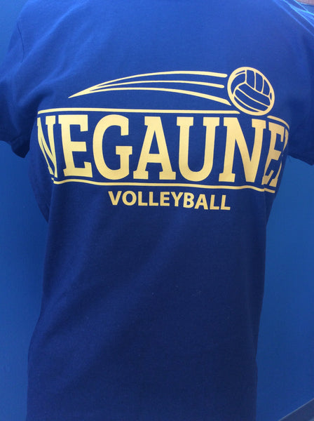 Ladies Negaunee Volleyball