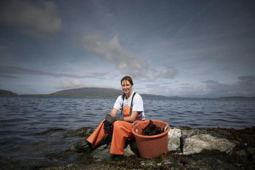 Mara Seaweed looks to recapture the wave of momentum post-coronavirus