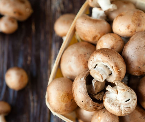 Mushrooms and Seaweed – The perfect umami combo