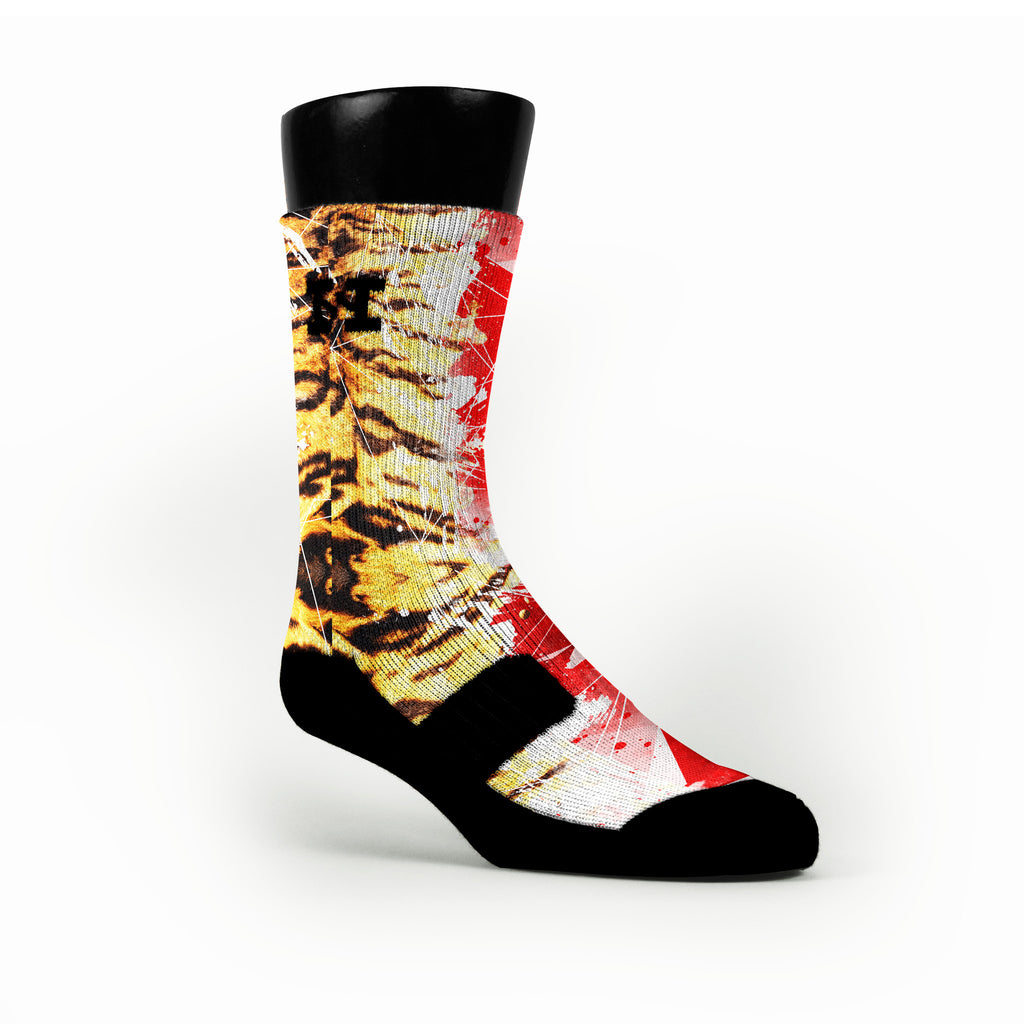 2K14 Custom HoopSwagg Socks
