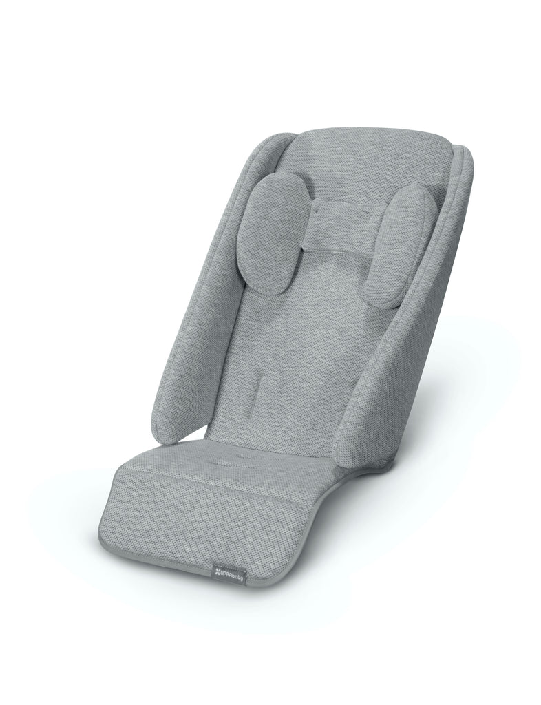 Infant SnugSeat (2020)