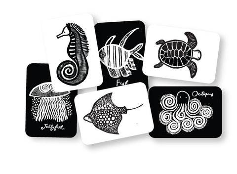 Art Cards - Sea Creatures