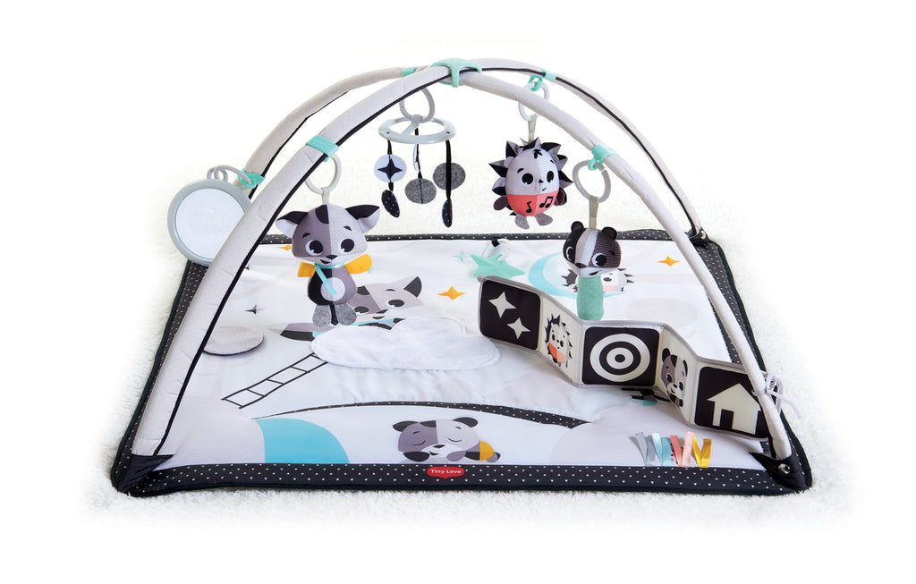 Magical Tales Black & White Gymini Play Gym