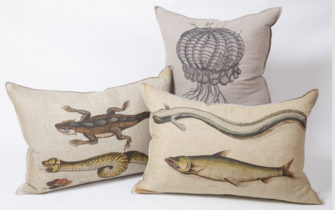 Evolution african scatter cushions