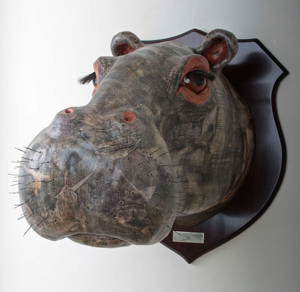 Hippo Wall Mounted African Animal Head