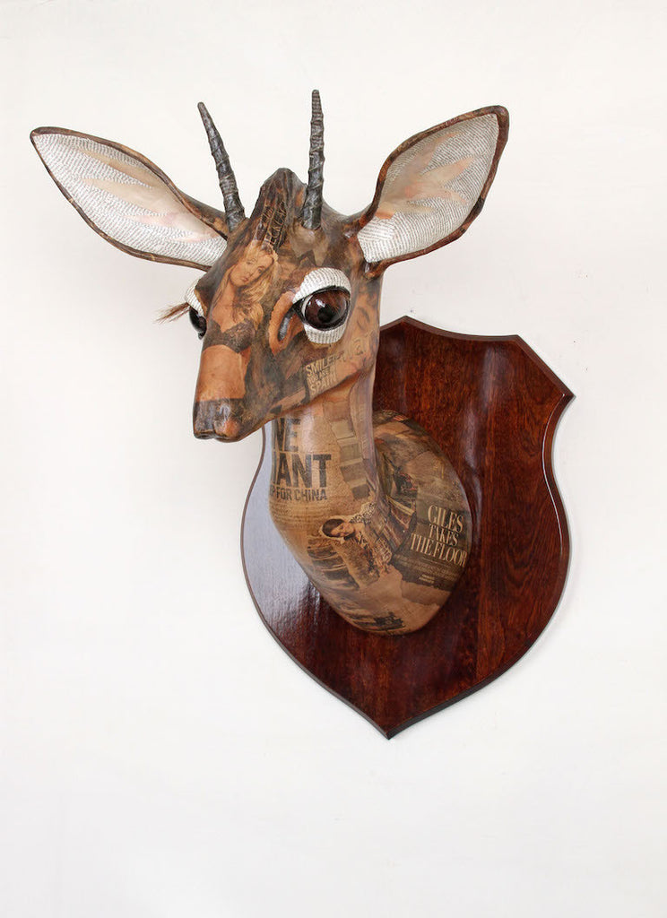 Kirk's Dik Dik Wall Mounted African Animal Head