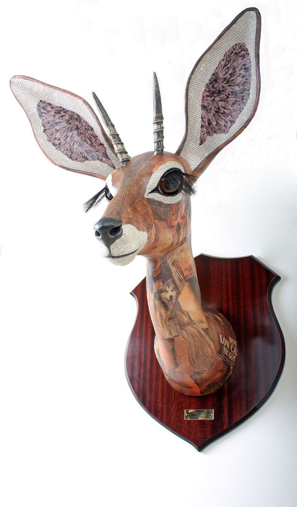 Steenbok Wall Mounted African Animal Head