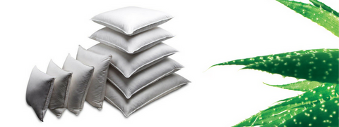 Stack of Cushions and Aloe